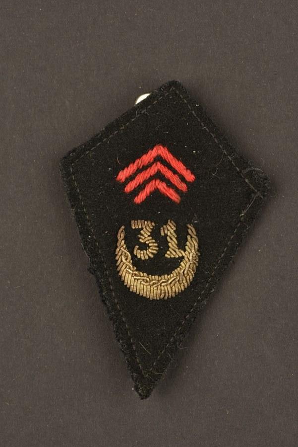 Insigne du 31° Bataillon de Marche du génie